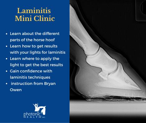 Laminitis MIni clinic