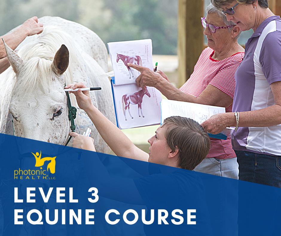 level 3 course website